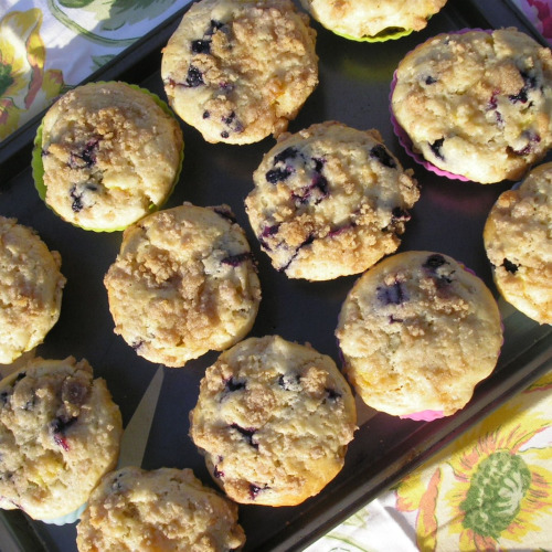 Blueberry Muffins3