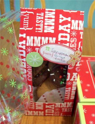 Festive Wilton Christmas Cookie Package